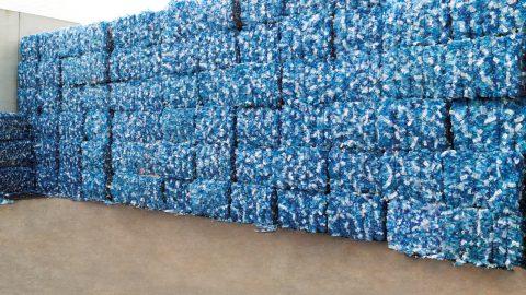 Echte Kreislaufwirtschaft bei Plastikflaschen