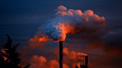 Weltweiter Klimastreik am 24. April
