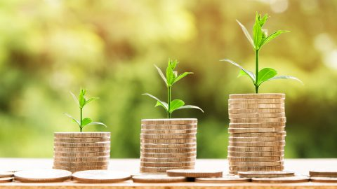 Was ist 'grünes Geld'?