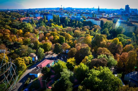 Wien:  Positive Bilanz für die Coolen Straßen