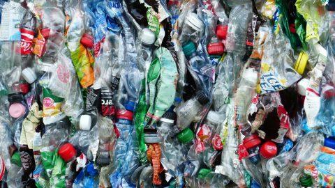 So soll nachhaltiger Verpackungskreislauf gefördert werden