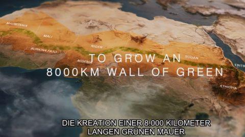Filmtipp: The Great Green Wall