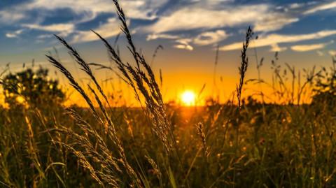 Vormerken: 21. Klimatag am 12. und 13. April!