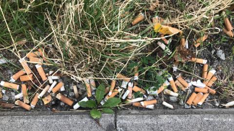 Neues Leben für alte Kippen: Aus Zigaretten-Stummel werden Sammelbehälter